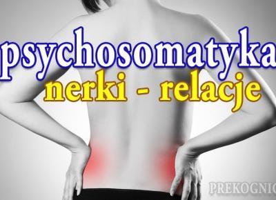 Psychosomatyka Nerki: jak rozumieć choroby nerek? - Prekognicja.pl