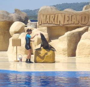 uroda cieszy tylko oczy dobroć jest wartością trwałą: Marineland czyli podwodne królestwo