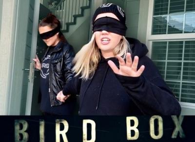 """""""BIRD BOX CHALLENGE"""" - NIEBEZPIECZNY TREND INSPIROWANY FILMEM! NA CZYM POLEGA?"""