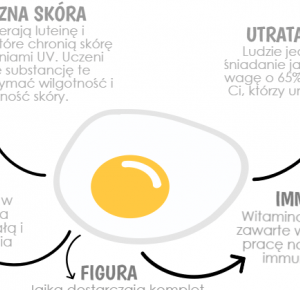 The foxy diet: DLACZEGO WARTO JEŚĆ JAJKA?