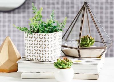 13 pomysółw jak udekorować dom za pomocą roślin | DO YOU LIKE MY ART?