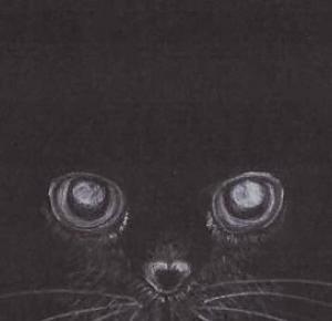 My little art: black cat