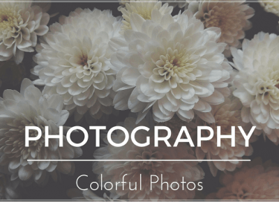 #2 PHOTOGRAPHY - Colorful Photos | Bette Fashion
