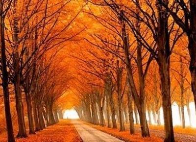 Jak przygotować się do nadejścia jesieni?