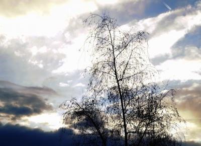Dookola-swiata: Post fotograficzny - Pierwszy śnieg w tym roku