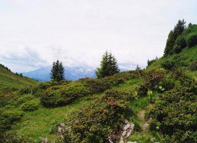 Dookola-swiata: Alpejskie szczyty - Droga do Vilan #2