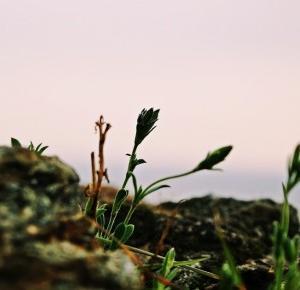 Dookola-swiata: Post fotograficzny