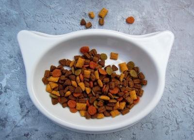Darmowe próbki karmy dla kota marki Josera | Dorabiaj przez Internet