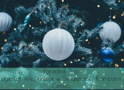Dorota Pisze.pl: Poradnik Zosi. Blogerko! Weź udział w Świątecznej Kampanii z Ceneo.