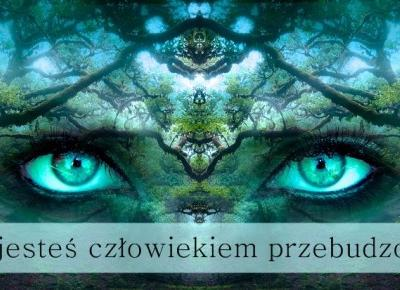 Dorota Pisze.pl: Czy jeste? cz?owiekiem Przebudzonym?