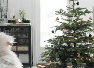 Bożonarodzeniowy niezbędnik i świąteczne dekoracje choinek | D&P Blog