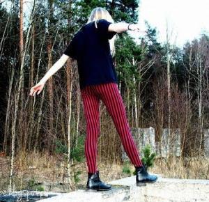Dumb or Happy? : Życie samotnej foki