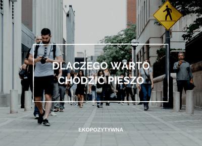 17 powodów, dla których warto… chodzić pieszo | ekopozytywna