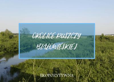 Okolice Puszczy Białowieskiej - co warto zobaczyć? - ekopozytywna