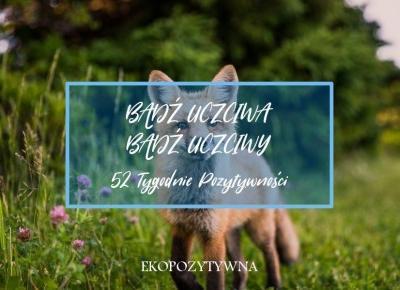 Bądź uczciwa, bądź uczciwy | 52 Tygodnie Pozytywności | ekopozytywna