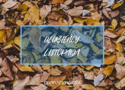 Ulubione w listopadzie | Ulubieńcy miesiąca | ekopozytywna