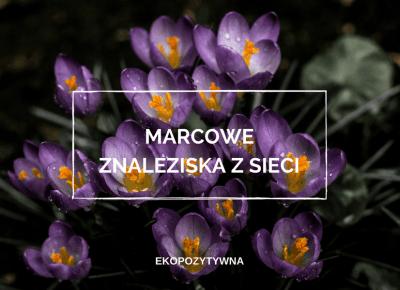 Marcowe znaleziska z sieci | ekopozytywna