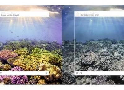 Co kryje się za perfekcyjnymi zdjęciami krajobrazów z Instagrama? WWF pokazuje prawdę