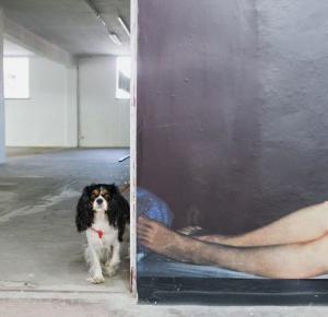 Nie znam się na sztuce | Psychologia fotografii