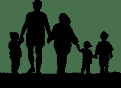 Toksyczni rodzice        -         Ewa Kalina