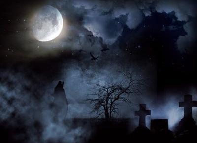 Ewa Kalina: Jesteś mordercą. Cmentarz marzeń.