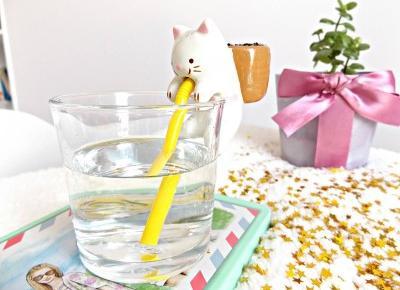 Goodies » Samonawadniająca roślinka Chuppon » Kotek (mięta)