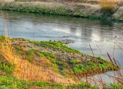 Wiosenny spacer nad rzeką ☺
