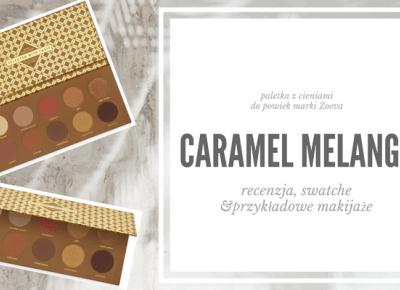 CARAMEL MELANGE BY ZOEVA - FATTIECHIPS