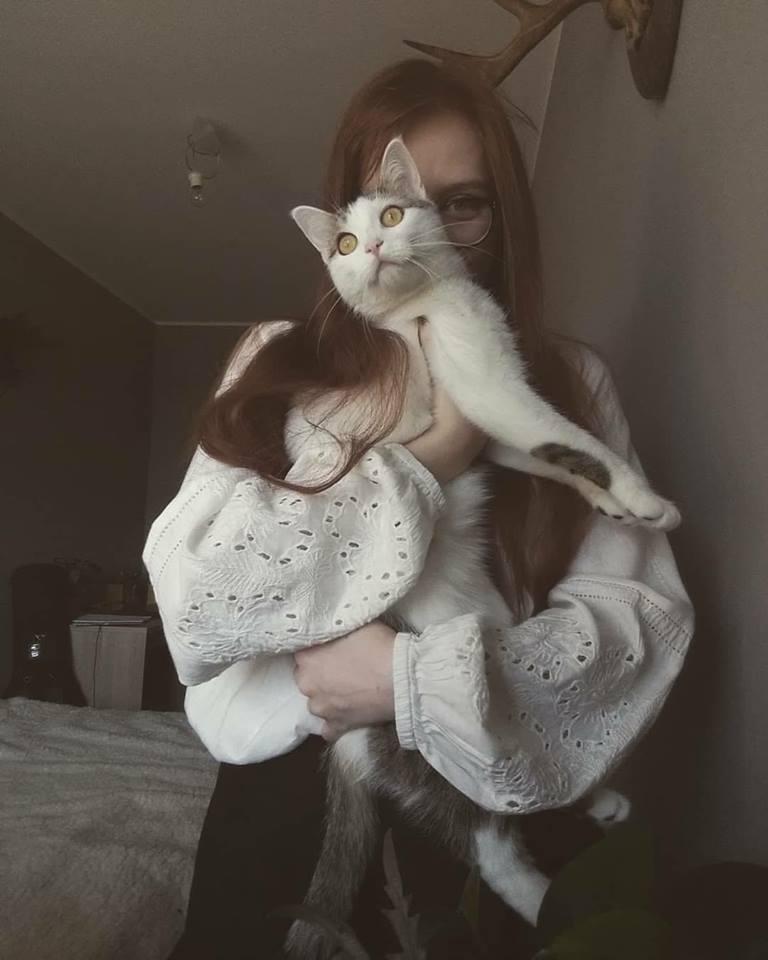 Czy kot może być vege?