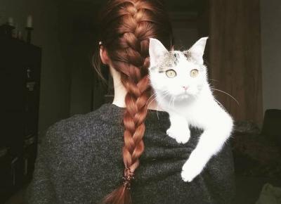 Zioła pogrubiające włosy, czyli moje efekty po senesie z henną