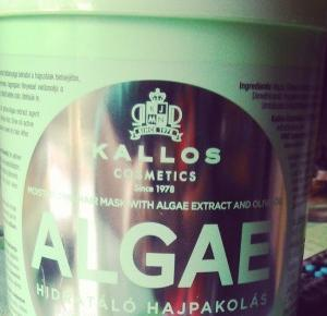 My little world: Kallos Algae