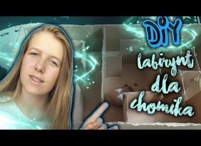 DIY | LABIRYNT DLA CHOMIKA!