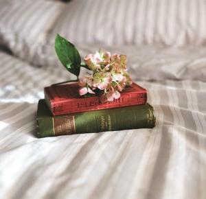 Książki są fajne! Dopóki to nie lektury... - HEAD DIVIDED