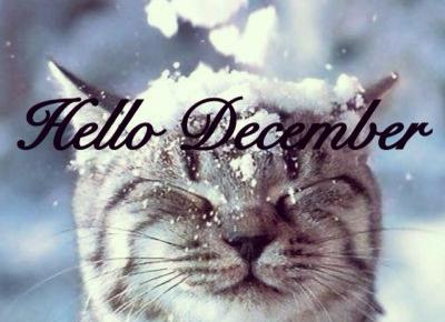 Ayuna: Hello December, Hello Winter!