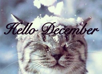 Ayuna: Hello December, Hello Winter!