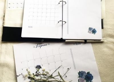 Kalendarz na lipiec 2017 do wydrukowania | Hiacynt w doniczce