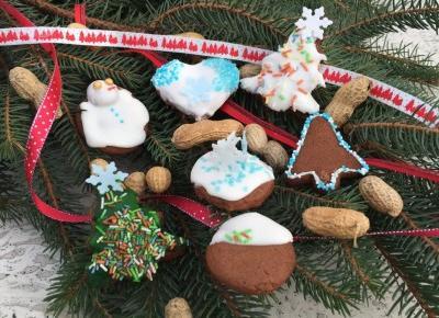 Pierniczki świąteczne | Hiacynt w doniczce