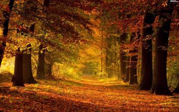 LifeStyleHubertKucBlog: Gorące lato wakacje a deszczowa jesień nauka