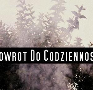 Pasje Weroniki: Powrót do codzienności