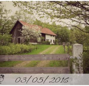 Pasje Weroniki: 03/05/2016