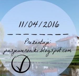 Pasje Weroniki: 11/04/2016