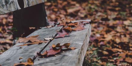 Przestań narzekać na jesienną aurę
