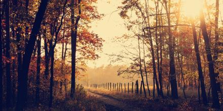 21 fantastycznych zdjęć tej jesieni