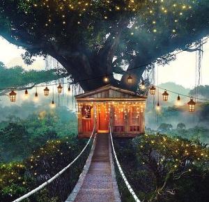 Magiczny domek na drzewie