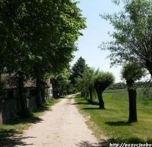 Miejsce, które warto odwiedzić: Muzeum wsi mazowieckiej w Sierpcu | Pozycje Obowiązkowe