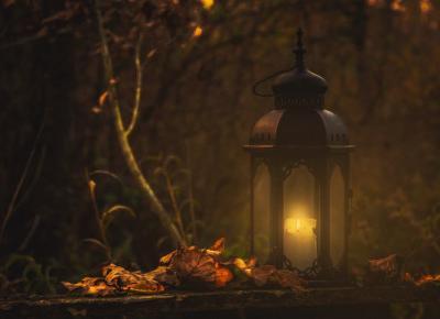Kryminały i horrory w sam raz na jesienny wieczór