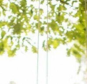 Singielka na weselu ~ Blog Singielka