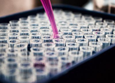 W Niemczech odnotowano zakażenie nowym wirusem odzwierzęcym