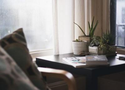 Rośliny w biurze - zrób sobie zieloną strefę relaksu - e-bonsai