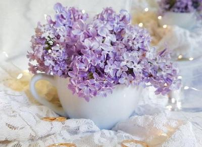Cup full of lilac flowers 💜